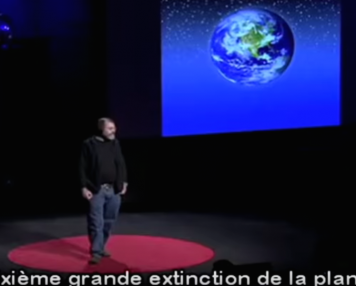 champignons-Stamet-conference-NEXUS