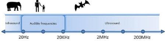fréquences infrason