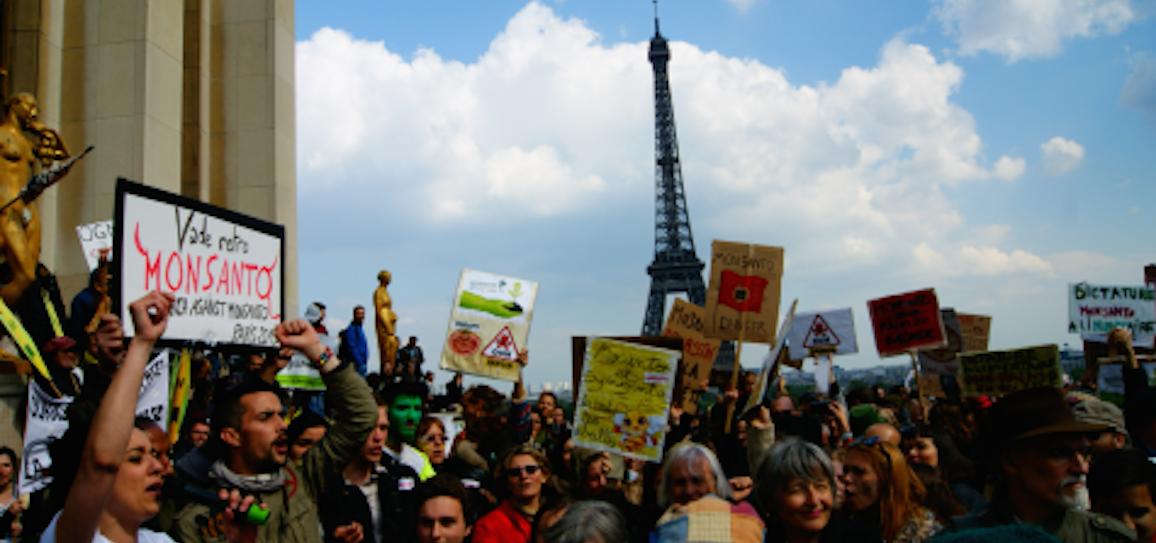 marche-Paris-Monsanto-2013-NEXUS