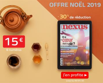 Offre Noel abonnement numérique 1 an